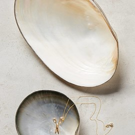 Anthropologie - Seashell Trinket Dish