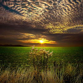 Phil Koch - On the Edge