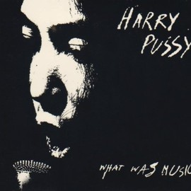 Harry Pussy - Best Of: What Was Music