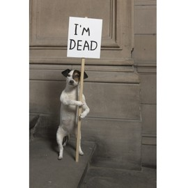 David Shrigley - I'M DEAD