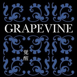 GRAPEVINE - 覚醒~10th Anniversary Special Package~