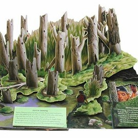 Stephen King - The Girl Who Loved Tom Gordon: A Pop-up Book