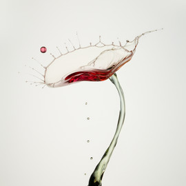 HEINZ MAIER - Red on White, water drops, Photograph