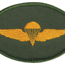 "MASH CO. - TAXI DRIVER  ""Para. Wing""Patch"