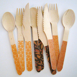 AllyandAidan - Fall Thanksgiving Harvest Party: Biodegradable Eco Friendly Compostable Wooden Wood Spoons Knives Forks set