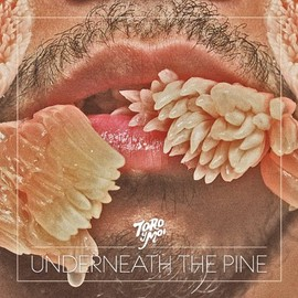 Toro Y Moi - Underneath the Pine [Analog]