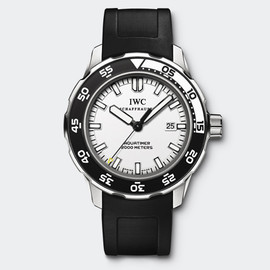 IWC - IW356811 Watch Front