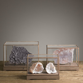 RH - Specimen Display Case Rectangle