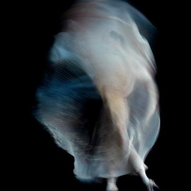 NICK KNIGHT - photographer
