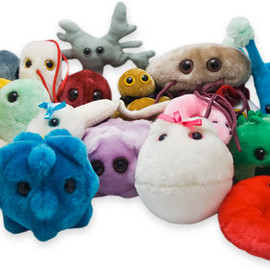 GIANTmicrobes - Best Sellers!