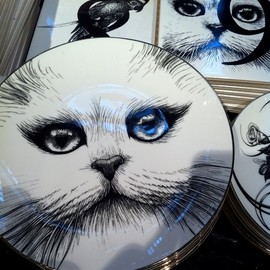 rory dobner - Perfect Plates Cheshire Cat without Monocle