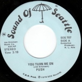 Push - You Turn Me On / It Ain't Never Been This Funky