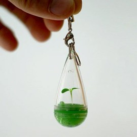 Phone charms and straps - Growing Pet Plant Seed Bonsai Phone Strap Charm Dangle