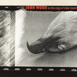 JOHN WOOD - on the edge of clear meaning