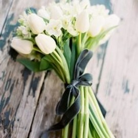 white tulips, so simple..