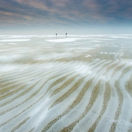 IJsselmeer, The Netherlands - Natures roadmap