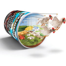 Ben & Jerry's - It's What Is Inside That Counts