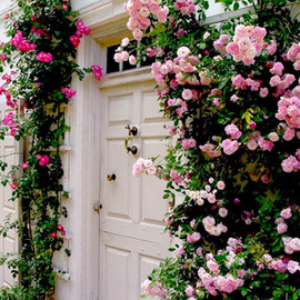 door with flower