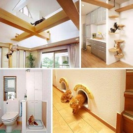 Feline Interior Design - Wall-Climbing Home Decor For the Stylish Cat Owner