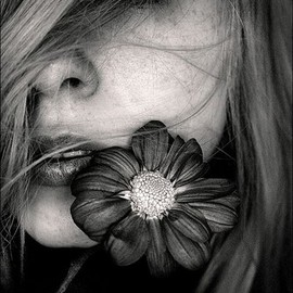 Black and White and Flower