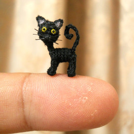 suami - Cute Black Cat