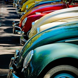 VW Beetles - VW Beetles