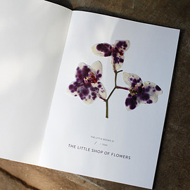 THE LITTLE SHOP OF FLOWERS - LITTLE BOOKS 01