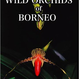 アンソニー・ラム - WILD ORCHIDS of BORNEO(DVD)