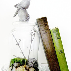 DoodleBirdie - Bird Cloche Terrarium I - Glass Bell Jar & Songbird Finial