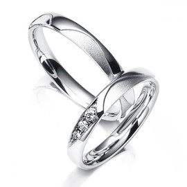 MEISTER - Wedding Rings Symbolics 013 platinum