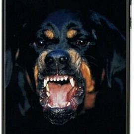 GIVENCHY by Riccardo Tisci - iphone5 case (rottweiler)