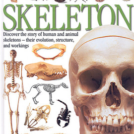 Steve Parker - Skeleton (Eyewitness Guides)