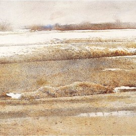 Andrew Wyeth - Hoar Frost, 1995, watercolour on paper