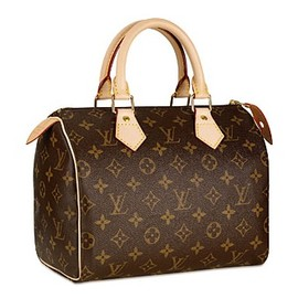 LOUIS VUITTON - Speedy 25