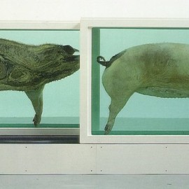 damien hirst -  This little piggy went to market, this little piggy stayed at home