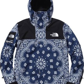 SUPREME x THE NORTH FACE - Mountain Parka
