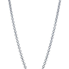 TIFFANY&Co. - by the yard necklace  (platinum)