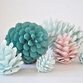 Hand painted pine cones.