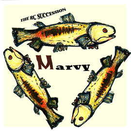 RC SUCCESSION - MARVY