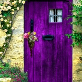 unknown - purple, green, door