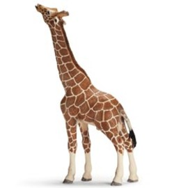 Schleich-s - Giraffe, male, eating