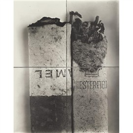 Irving Penn - 'CIGARETTE NO. 37' (IN FOUR PARTS)