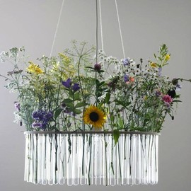 Pani Jurek - Test Tube Chandelier with Flowers