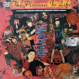 V.A. - The Pleasures In Life