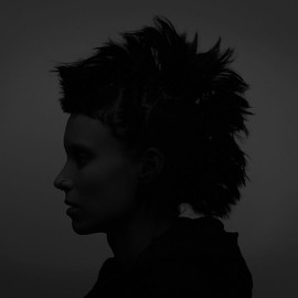 David Fincher - the girl with the dragontattoo
