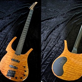 Parker - Fly Bass 5-Strings