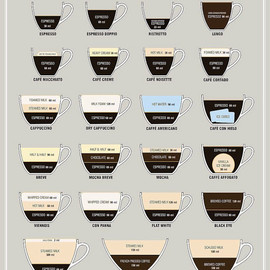 Espresso Field Guide by Orbit Visual Graphic Design Studio - Espresso Field Guide by Orbit Visual Graphic Design Studio