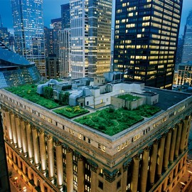 Chicago - City Hall Rooftop Garden
