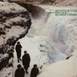 Echo & The Bunnymen - Porcupine [VINYL]