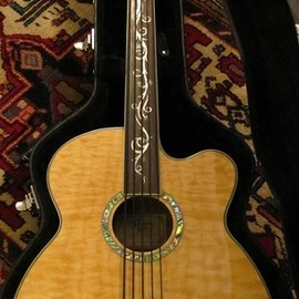 Michael Kelly - Dragonfly 5strings Acoustic Fretless Bass